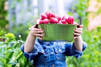 Back to basic- puur eten sluit aan bij het Paleo dieet