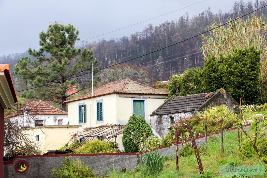 The place to be in Madeira: Casa do Caminho Verde