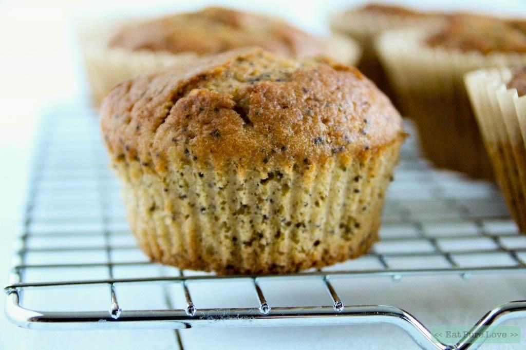 Glutenvrije citroen maanzaad muffins