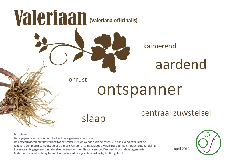 Valeriaan-etherische-olie