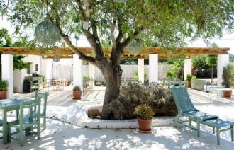 De 5 lekkerste healthy hotspots Ibiza