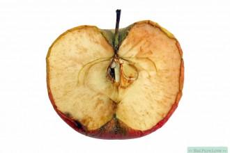 Antioxidanten hoe werken ze eigenlijk?-1