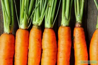 Dit zijn de 10 belangrijkste antioxidanten