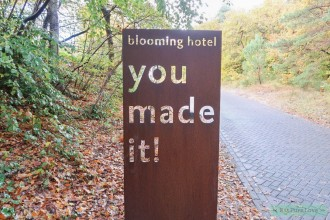 Hotspot: blooming hotel in Bergen
