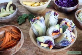 Verse vegetarische springrolls met mango en avocado