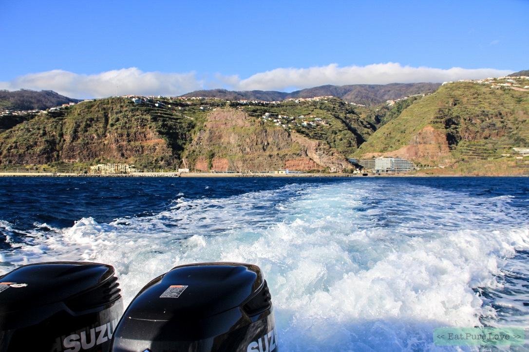 Waarom Madeira op jouw bucketlist moet staan!