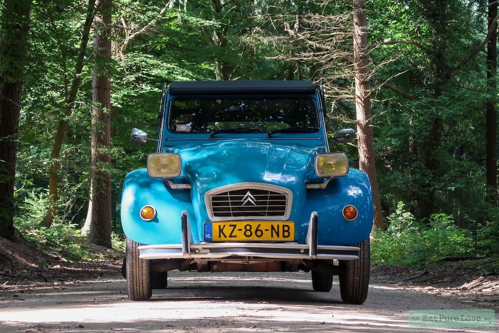 Relax to the max! Een dagje eend rijden over de Veluwe