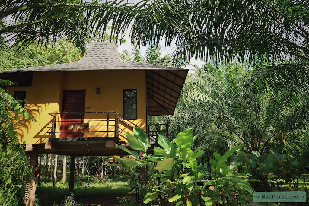 De Anurak Community Lodge: een magisch en duurzaam verblijf in de jungle van Thailand