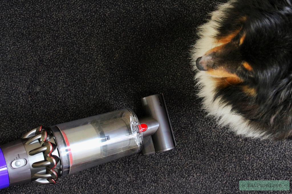 review Dyson Cyclone V10 Absolute