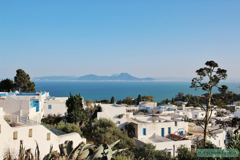 Must visit in Tunesië: Sidi Bou Said (het blauw-witte dorpje)