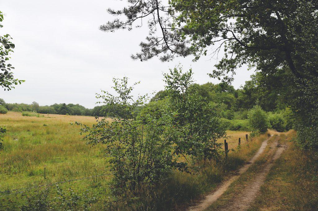 Landgoed Junne